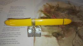 amarilla1.jpg