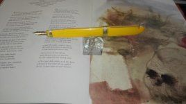 amarilla4.jpg