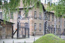_DSC3302 [Post Auschwitz].jpg