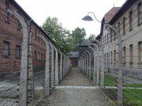 P5220251 [Post Auschwitz].jpg