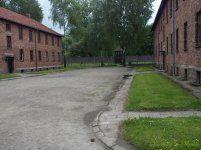 P5220208 [Post Auschwitz].jpg