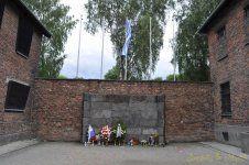 _DSC3350 [Post Auschwitz].jpg