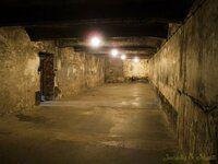 P5220255 [Post Auschwitz].JPG
