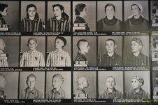 _DSC3343 [Post Auschwitz].JPG