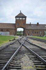 _DSC3300 [Post Auschwitz].JPG