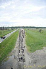 _DSC3419 [Post Auschwitz].JPG