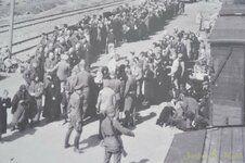 _DSC3428 [Post Auschwitz].JPG