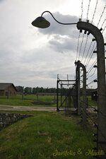 _DSC7789 [Post Auschwitz].JPG