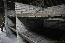 _DSC7409 [Post Auschwitz].JPG