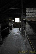 _DSC7392 [Post Auschwitz].JPG