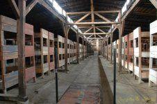 image (1) [Post Auschwitz].jpg